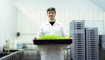 scientist holding crops in laboratory