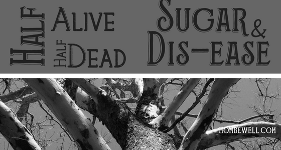 Half Alive Half Dead, Sugar and Dis-ease
