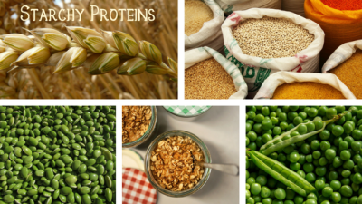 Starchy Proteins