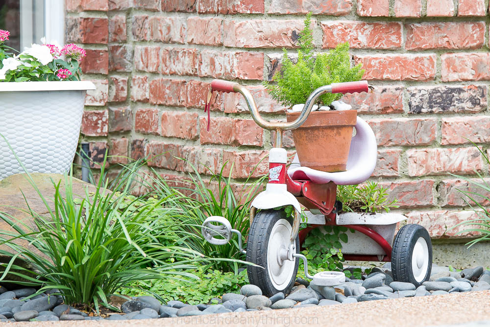 Tricycle in Flower Bed