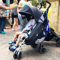 Inglesina Net Stroller with the Skip Hop Grab & Go Stroller Saddlebag