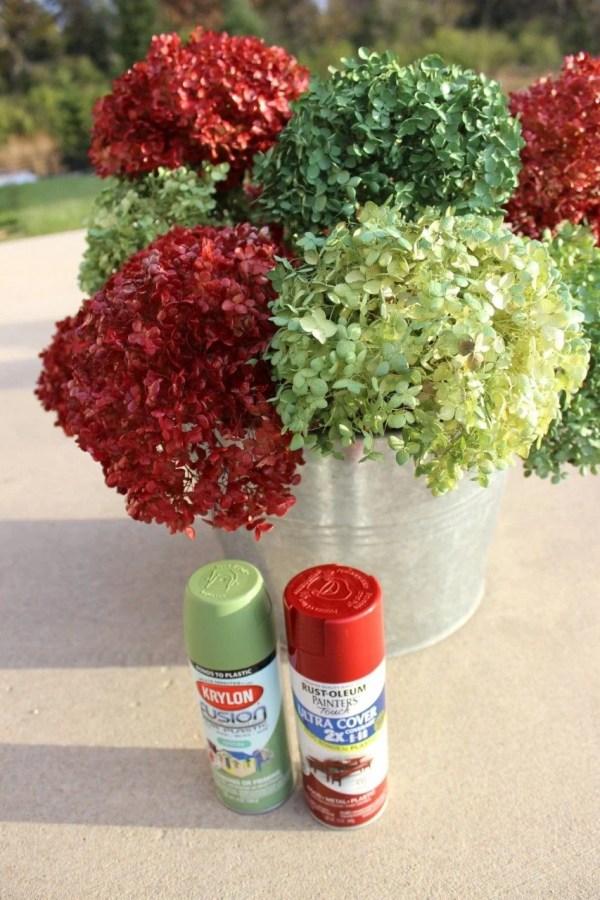 spray paint hydrangeas