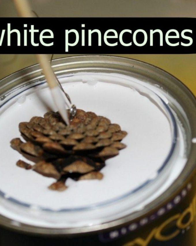White pinecones – paint dip method.