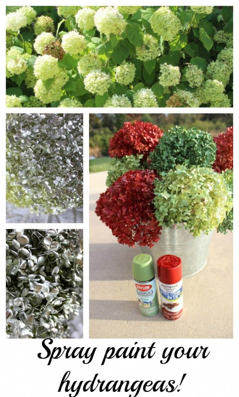 Spray paint hydrangeas. Use any color you want. After three years, mine still look great!