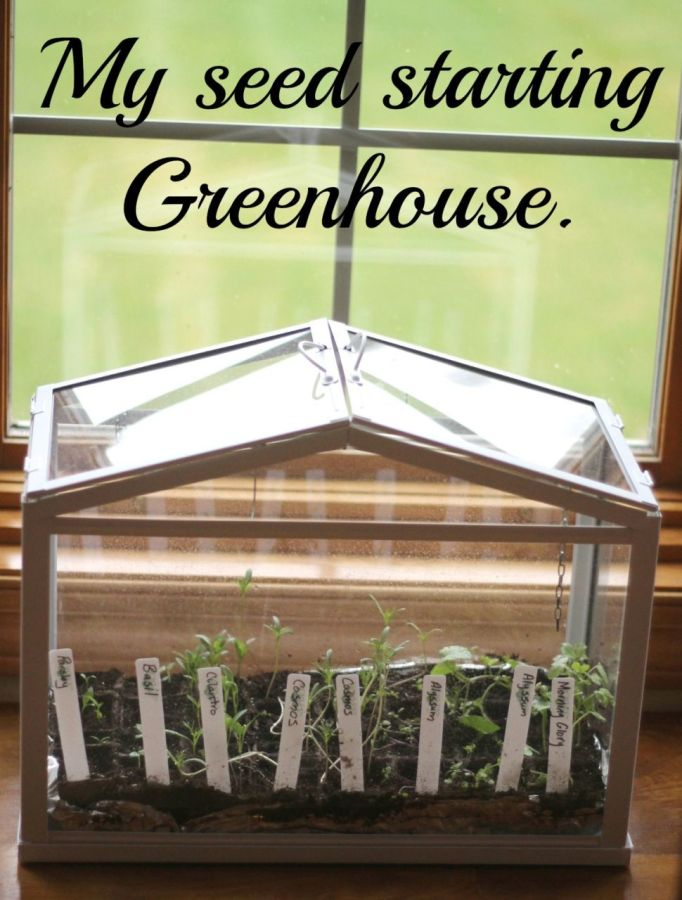 Seed starting greenhouse.
