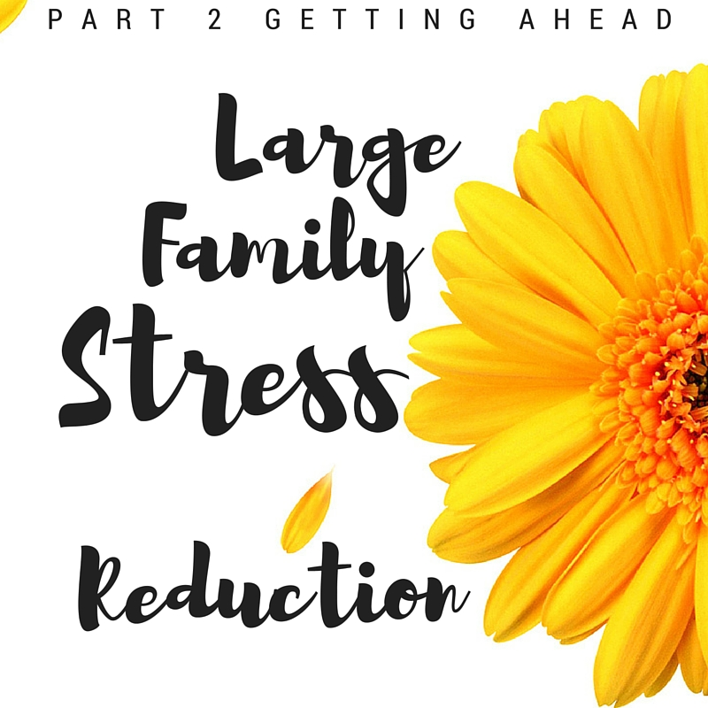 Large Family Stress Reduction: Getting Ahead Part 2