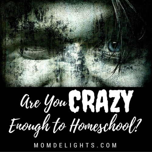 Are You Crazy Enough to Homeschool Your Children?
