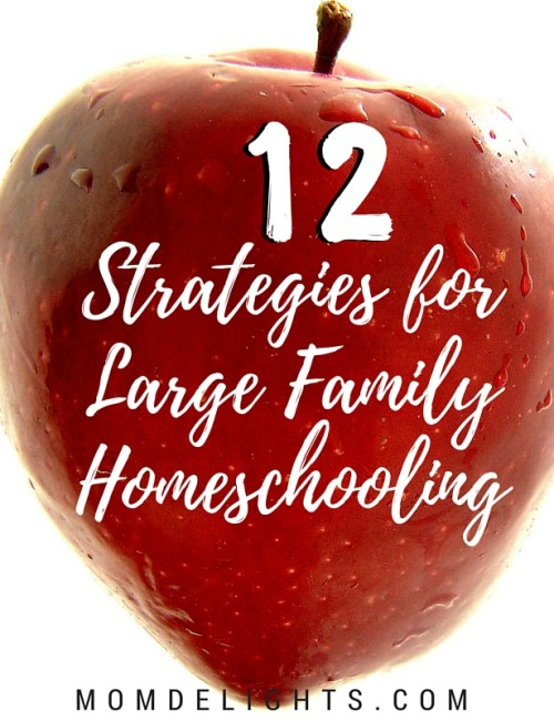 12 Strategies for Large Family Homeschooling