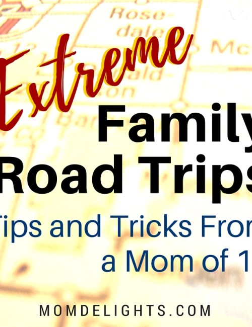 EXTREME Family Road Trips: Mom of 15 Tells All!