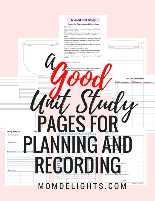 A Good Unit Study Plan