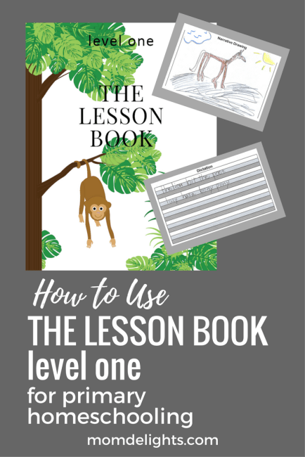 How to do a language arts lesson using The Lesson Book