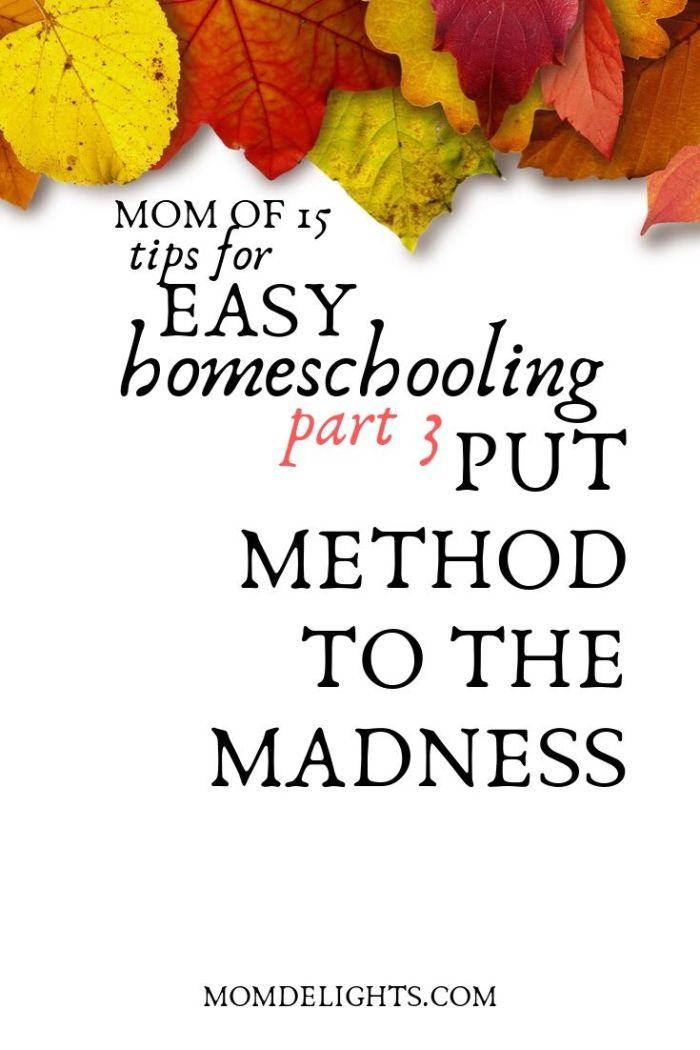 Tips of easy  homeschooling: put method to your madness