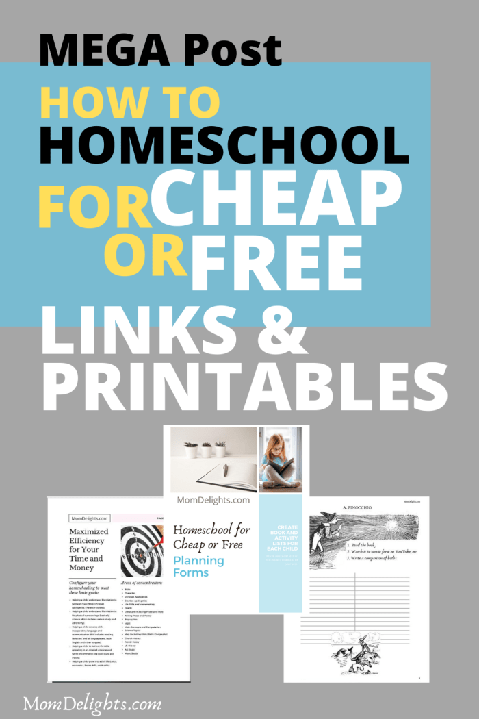 How to Homeschool for Cheap or Free Mega Post with loads of links and printables