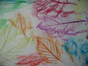 leaf-rubbings-11