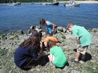 whaling museum older kids ocean science (1)