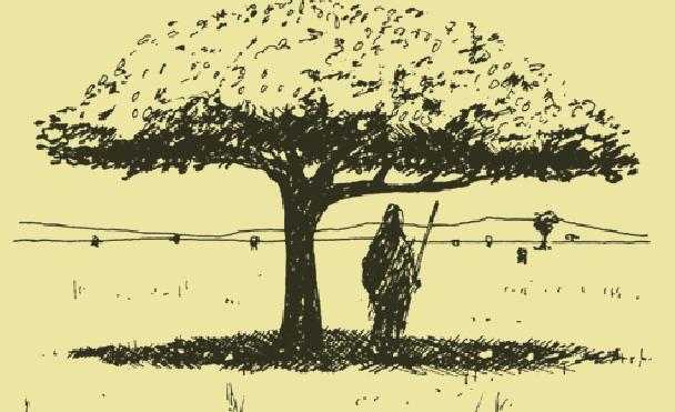 "The ""Terrorism Tree"""