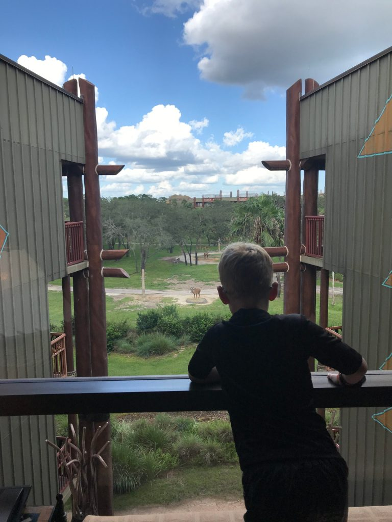 Animal Viewing in Jambo Animal Kingdom Lodge