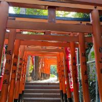 Japan Family Travel Tips