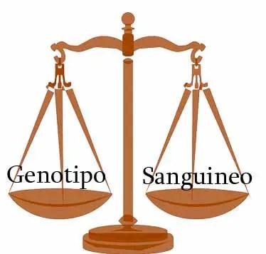Dieta del genotipo o dieta del tipo sanguíneo ¿cuál es la mejor para mí?