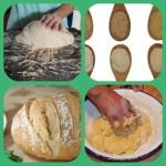 Agentes de tratamiento de harinas, los aditivos escondidos en el pan.