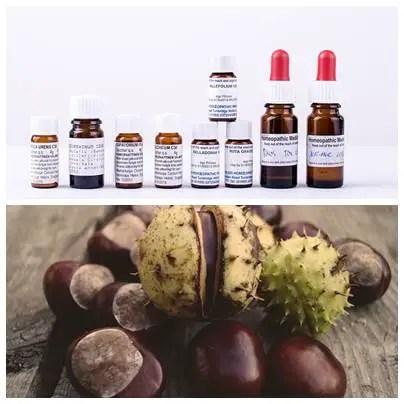 homeopatía para las hemorroides 2