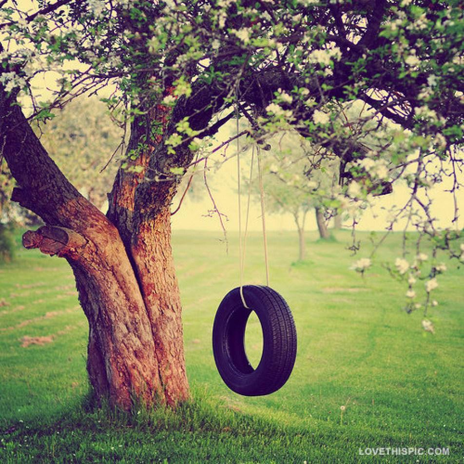 tire_swing