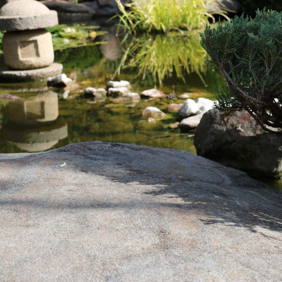 Adelaide Himeji Garden (Japanese Garden) // Moments by Charlie Albright | Creative Lifestyle Blog | Art + Fashion + Lifestyle + Photography | Made in Australia