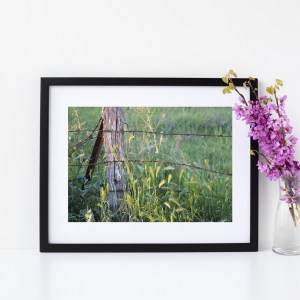 Nature Photography Fine Giclee Print | Monteith, South Australia | Size A4 | By Adelaide Artist Charlie Albright | Moments by Charlie Blog - Online Shop - Creative Freelance Services | Adelaide, South Australia