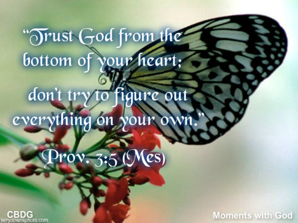 Follow God's Direction and Receive His Promises | Moments ...