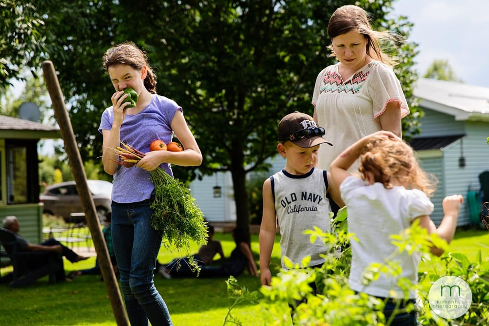 Cornwall children picking vegetables