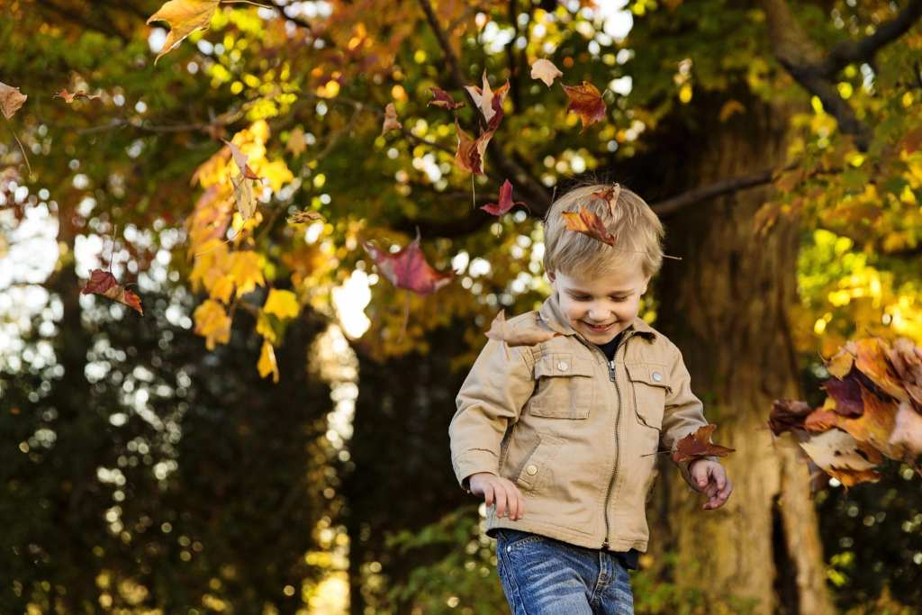 little blonde boy playing in autumn leaves during fall family photo shoot