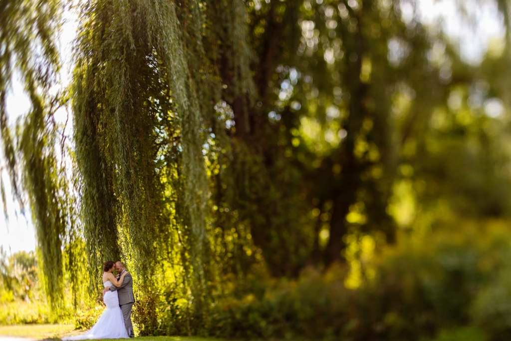 Bride and groom cuddle under willow tree