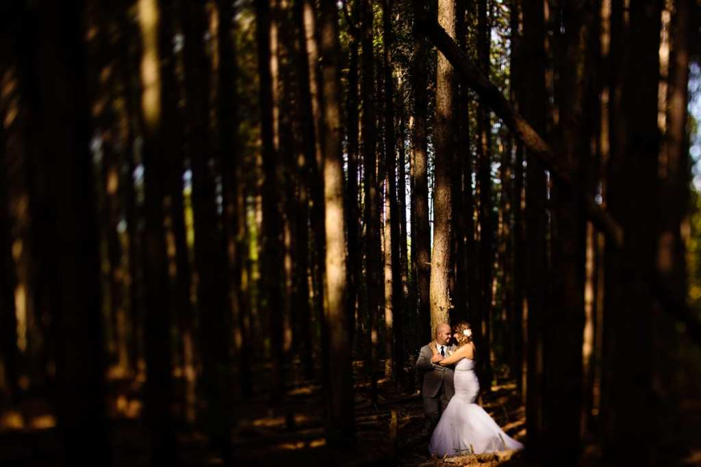 Bride and groom in patch of sunlight in forest