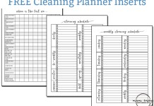 Free Cleaning Planner Inserts and Free Cleaning Family Binder Inserts. Free Happy Planner Inserts. Free Planner Inserts. Free bullet journal printables. Free Family Binder. Mom Envy.