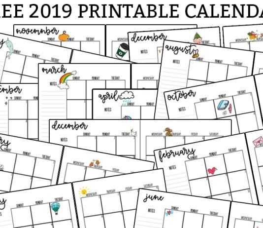2019 Printable Calendar - Download this free printable monthly and yearly calendar for 2019. It can be printed for any size planner. There is a blank 2019 monthly calendar and one with embellishments available. #planner #planneraddict #calendar