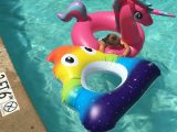 Coconut Pool Floats – The Coolest Rafts in Town
