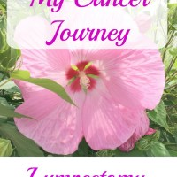 My Cancer Journey - Breast Lumpectomy
