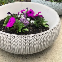 Easy Care Summer Container Gardens -- Pinterest Challenge Blog Hop