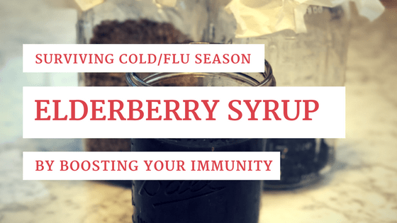 Elderberry Syrup and Boosting your Immunity