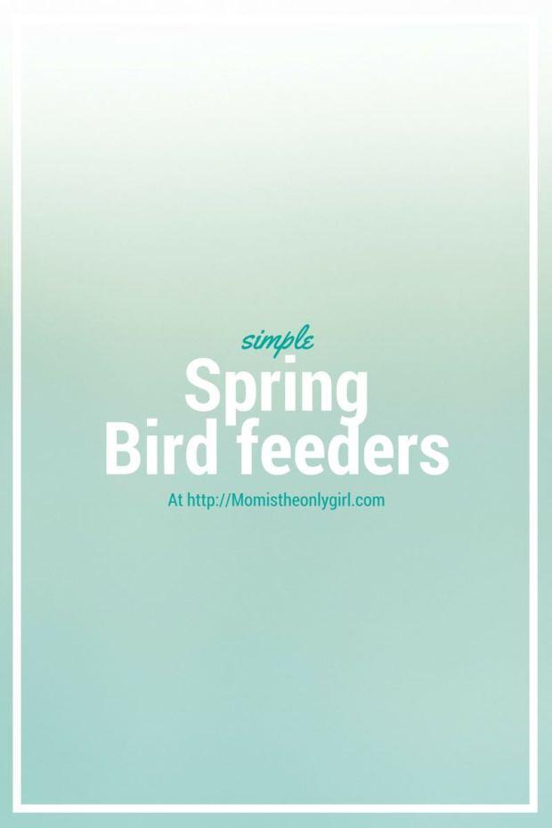 Spring Bird Feeders