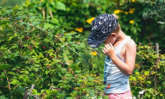How To Get Kids In The Garden and Off Screens