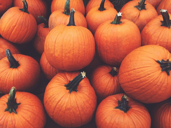 pumpkins for gratitude activity