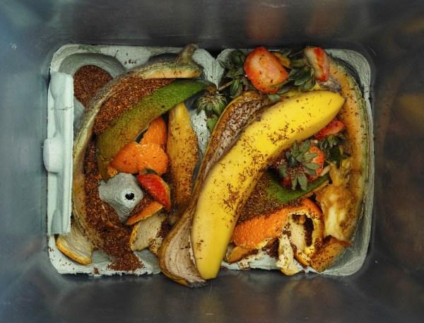 超噁! 回收大賣場的廚餘回收再利用 高屏地區多家餐飲店中標