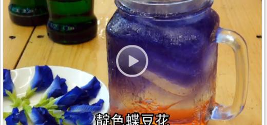 蝶豆花漸層飲料有四種人應避免飲用