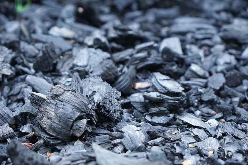 竹炭產品能吸附體內毒素是真的嗎?