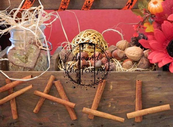 Fall Vignette Around the Fire Pit