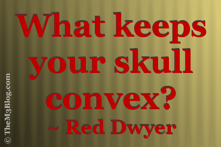 Red Dwyer Quotes
