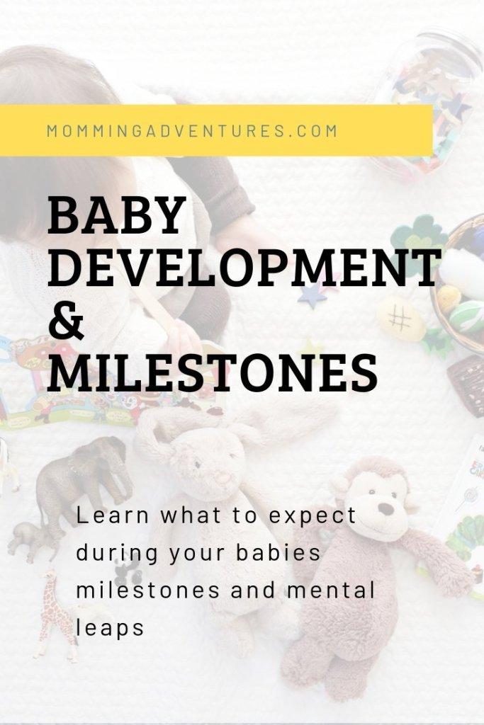 Developmental milestones from infancy to toddlerhood.