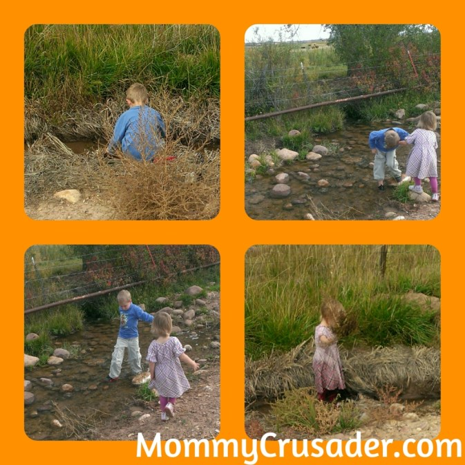 "Washing the ""green mud"" 