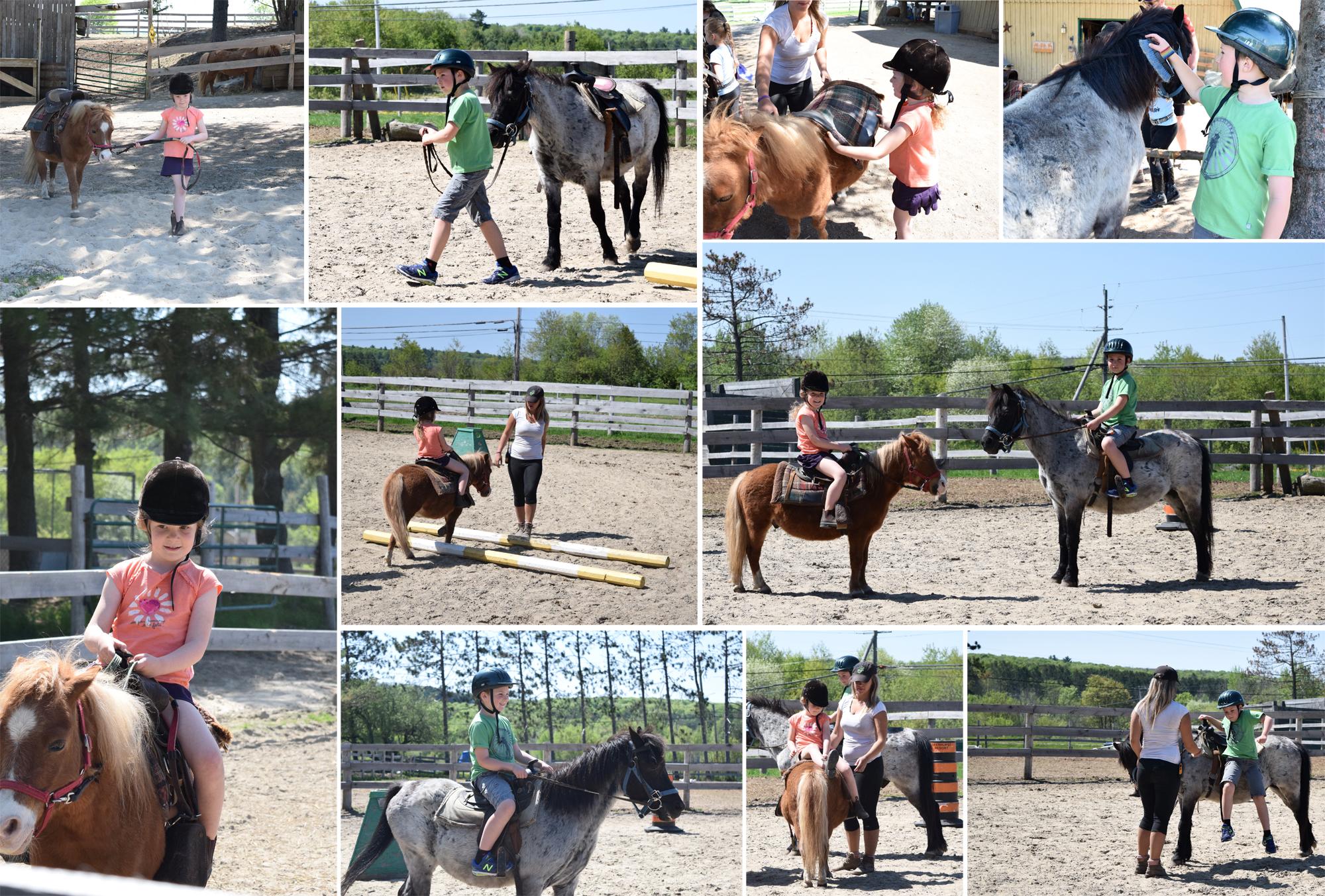 Deerhurst Resort - stables